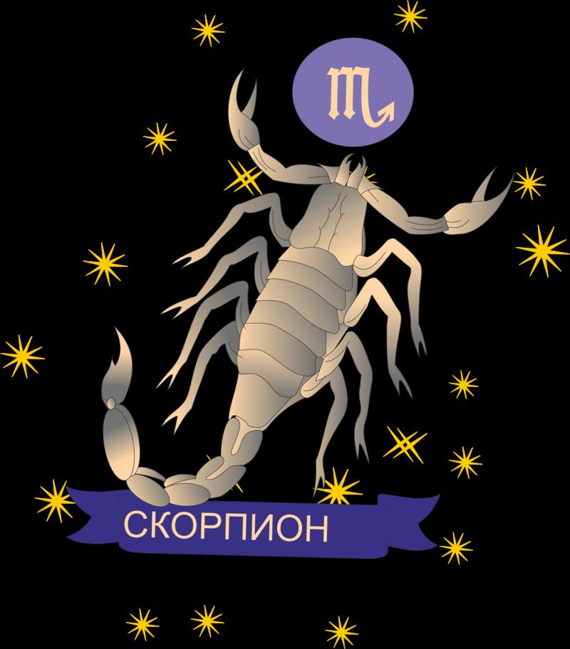 Скорпион знак зодиака женщина
